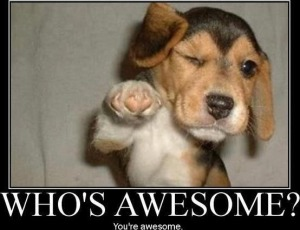 6-youre-awesome-puppy-dating-advice-help-me-find-love