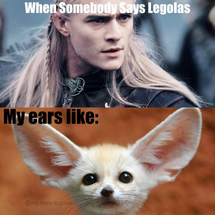 legolas_meme_lord_of_the_rings_by_nonamgeladze-d8nyb65